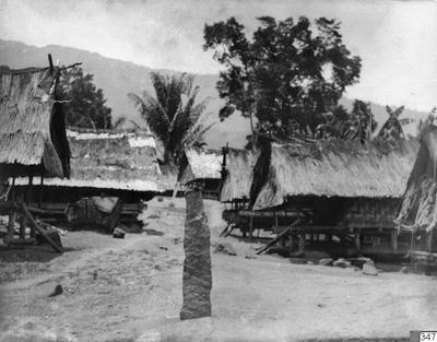 tempel, bytempel, palm, påle, hus, byggnad, träd, fotografi, photograph@eng