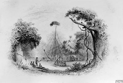 teckning, träd, fantasiskepp, skepp, Teckning, drawing@eng