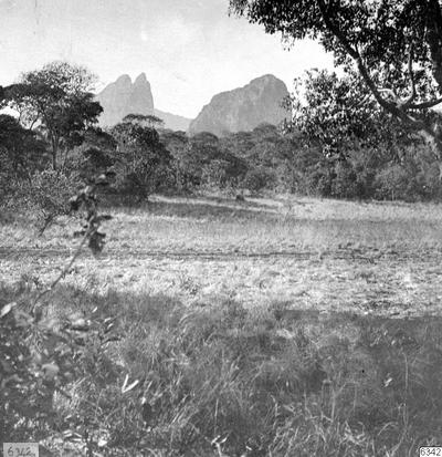 bergstopp, mimosaskog, fotografi, photograph@eng