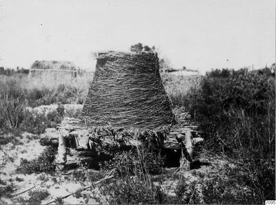 förrådsbehållare, cahuillaindian, baljväxt, träd, mesquite, fotografi, photograph@eng