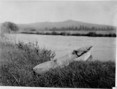 stam, urholkning, kanot, flodstrand, fotografi, photograph@eng