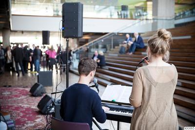 musik, uppträdande, publik, besökare, fotografi, photograph@eng