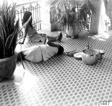 kokaattiralj, Kággaba-kvinnor, smycke, palm, veranda, väska, klädesplagg, matkärl, staket, fotografi, photograph@eng
