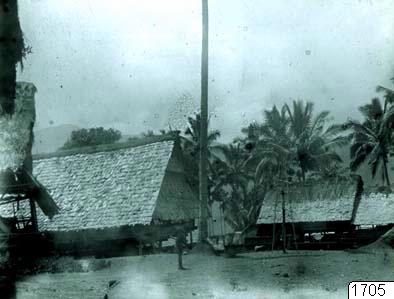 palm, byggnad, tempel, träd, fotografi, photograph@eng
