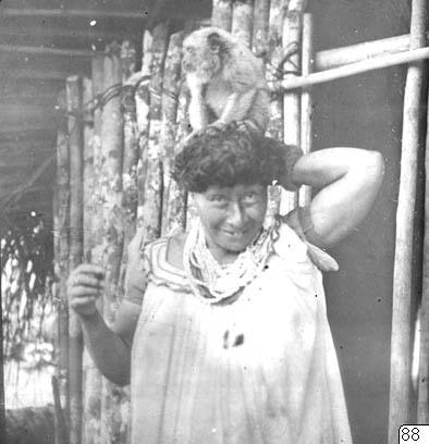 Gertrude, vrålapa, fotografi, photograph@eng