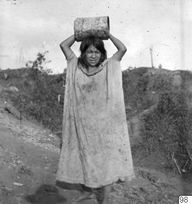 basttyg, kvinna, bark, fotografi, photograph@eng