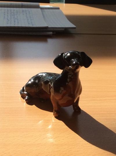 My model dachshund