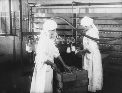 Zpracování mléka na výrobky