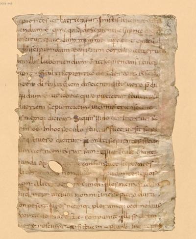 Liber regulae pastoralis - BSB Clm 29400(5