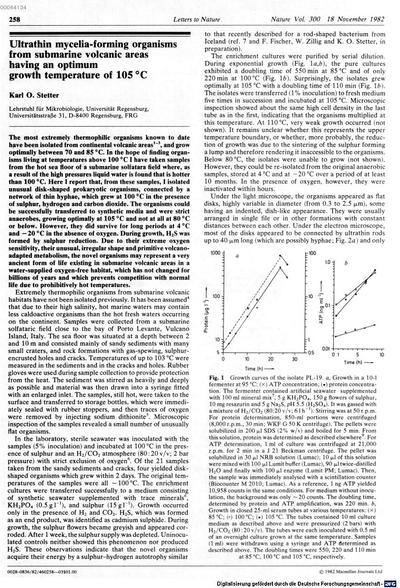 Ultrathin mycelia-forming organisms from submarine volcanic areas having an optimum growth temperature of 105°C