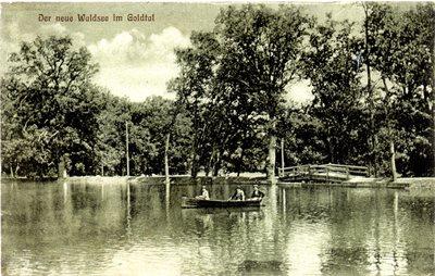 Der neue Waldsee im Goldtal