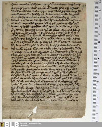 Sermo super euang. secundum Lucam, Fragment - Aug. Fr. 88