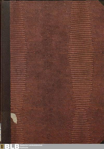 Die Handschriften von St. Peter im Schwarzwald : Die Pergamenthandschriften (Handschriften der Badischen Landesbibliothek in Karlsruhe, 10,2)