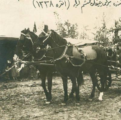 Bahar Bayramı'nda Birinci Olan At Arabası