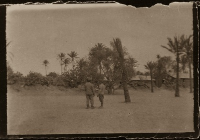 Between the oasis and the desert | Tra l'oasi e il deserto