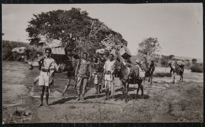 Expedition with camels and a donkey in Ethiopia | Guerra in Etiopia