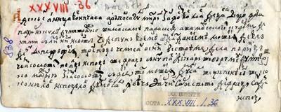 Aniţa vorniceasa a răposatului Mitrea fost vornic de Ţara de Jos, fata paharnicului Dumitraşco cu maica sa Paraschiva, dăruieşte ...