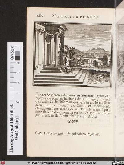 Baucis & Philemon en Arbres.