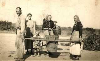 ORDIS - Anant a fer la verema amb una semal duta amb els pals semalers, acompanyats per una dona amb el cistell i l'aixada a les mans.