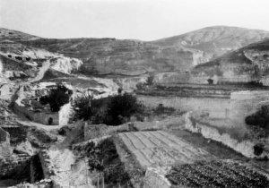 Biredjik, Blick auf Stadt und Höfe