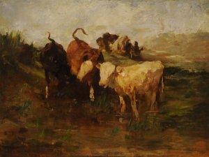 Rinder an der Tränke