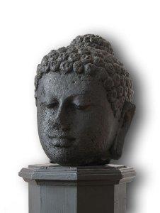 Haupt eines Buddha