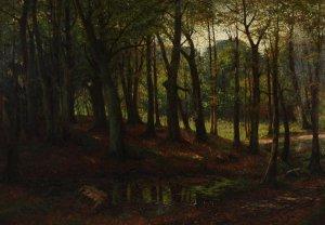 Wald mit Tümpel