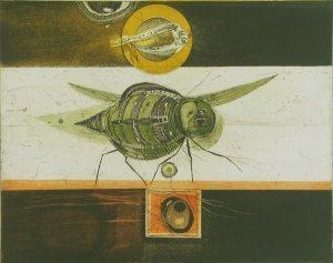 Insektenmaschine und Libellenrad