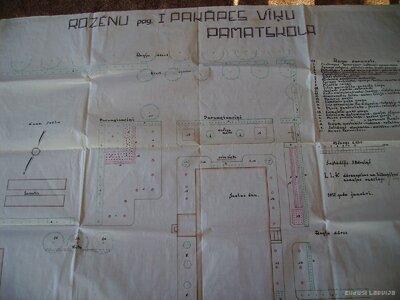 Staiceles pagasts. Vīķu skolas apzaļumošanas plāns