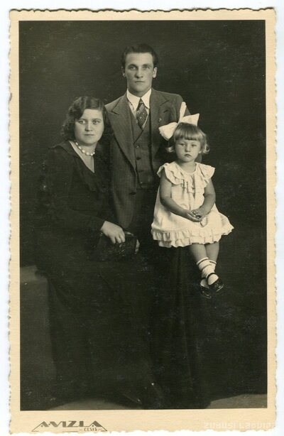 Cēsis. Vītolu ģimene
