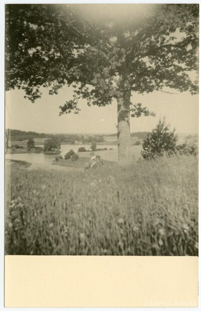 Laucienes pagasts. Ainava