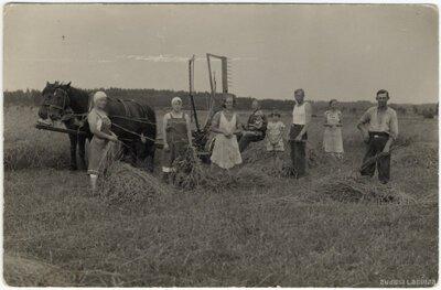 Rembates pagasts. Siena talcinieki un zirga siena pļaujmašīna Ogresziedu zemnieku saimniecībā