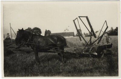 Rembates pagasts. Zirgu velkamais siena pļāvējs pie Garziedu mājām