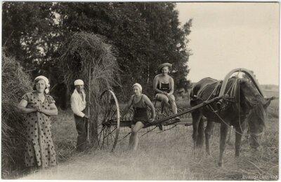 Rembates pagasts. Siena talcinieki pie zirgu velkamā siena grābekļa Ogresziedu pļavā