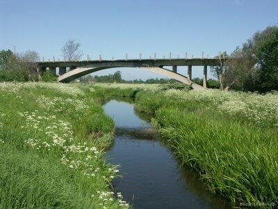 Tilts uz nekurieni