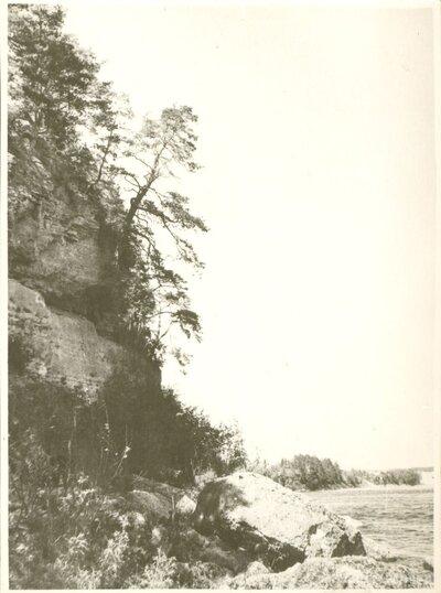 Daugavas krasts
