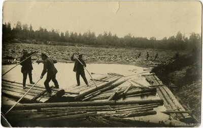 Kokmateriālu pludināšana