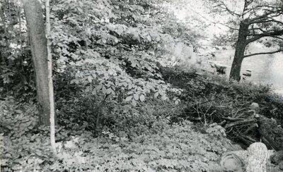 Teterlīču ūdensdzirnavas
