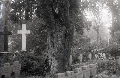 Iecava. Pirmā pasaules karā kritušo vācu karavīru kapi