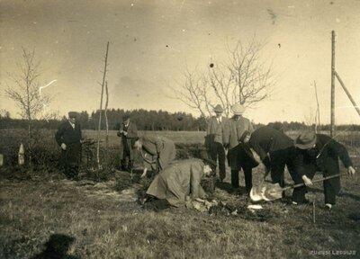 Eglīšu stādīšana pie Ložmetējkalna