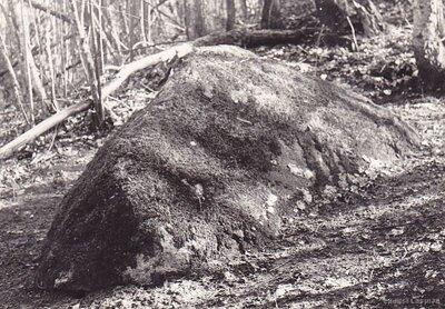 Kuršu virsaiša un Embūtes valdnieka Induļa kaps Vēres kalnā