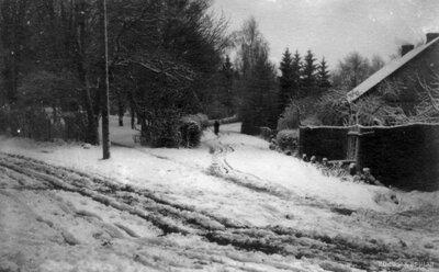 Talsi. Vidusskolas parks ziemā