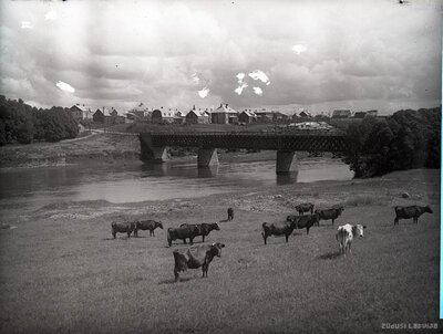 Bauska. Mūsas tilts