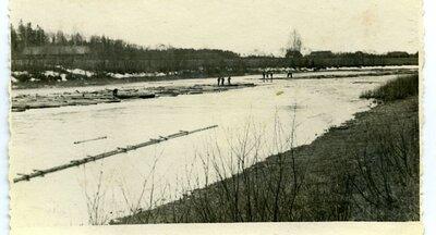 Kokmateriālu pludināšana Mēmeles upē. Rumba