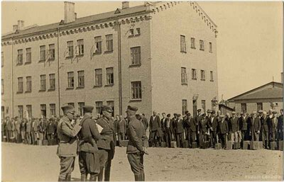 Latvijas armija. Jauniesaucamie