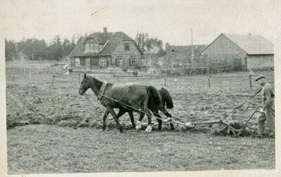 Salas pagasts. Birži. Aršana ar divjūgu arklu Geidānu tīrumā