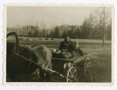 Sieviete ar bērnu zirga pajūgā
