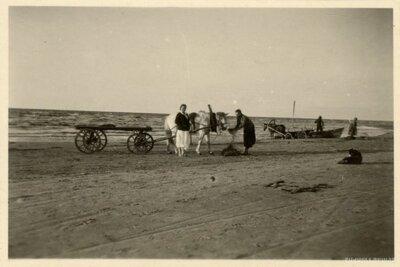 Mangaļu pagasts. Zirga pajūgs jūras krastā