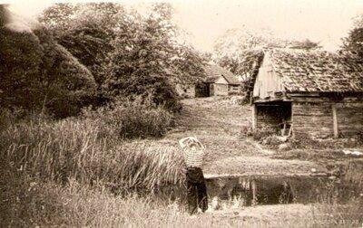 Turlavas pagasts. Ziemeļu brīvciems. Pirts