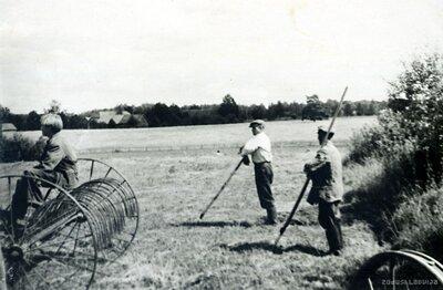 Kolhoznieki siena pļaujā
